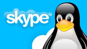 Хотите звонить по скайпу в браузере на Linux? Есть способ!